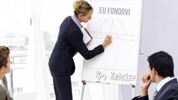 eu_fondovi_konzultanti
