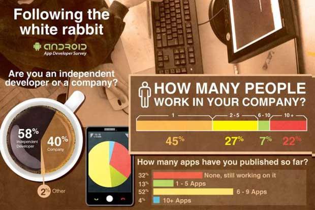 developer-infographic